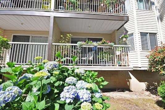111 2780 WARE STREET - Central Abbotsford Apartment/Condo for sale, 1 Bedroom (R2058310) #17